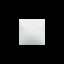WHITE DWO
