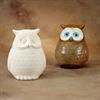 BOXES OWL COOKIE JAR/1 SPO