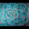 Pattern Pack - Succulent I/1 SPO