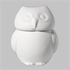 BOXES Owl Cookie Jar/3 SPO