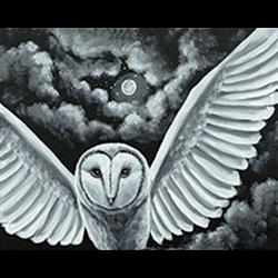 Pattern Pack - Night Owl/1 SPO
