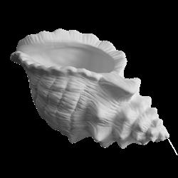 HOME Conch Shell Planter/4 SPO