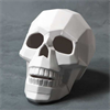 KIDS Faceted Skull/4 SPO