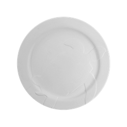 PLATES Rim Sea Turtle Plate/4 SPO