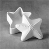 STARFISH BOX/6 SPO
