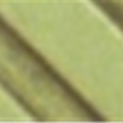 Mint Green, 1/2oz SPO