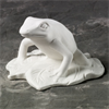 KIDS Rainforest Tree Frog/6 SPO