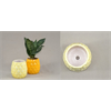 HOME DECOR Pineapple Planter/6 SPO