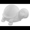KIDS Tilly the Turtle/6 SPO