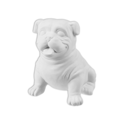 KIDS Buddy the Bulldog/6 SPO