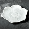 PLATES Seasonal Blooms Dinner Plate/6 SPO