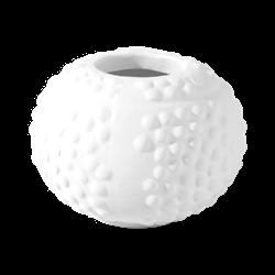 KITCHEN Sea Urchin Jar/12 SPO