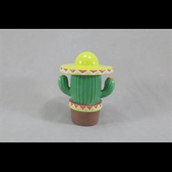 BOXES Cactus Box/6 SPO