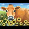 Pattern Pack - Sunflower Jersey/1 SPO