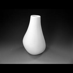 HOME DÉCOR Organic Vase/6 SPO