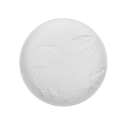 PLATES Dinosaur Plate/12 SPO