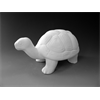 KIDS Tango the Turtle/6 SPO
