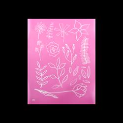 Garden Silkscreen/1 SPO