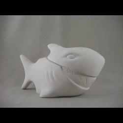 BOXES Shark Box/6 SPO