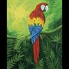 Pattern Pack - Mr. Macaw/1 SPO