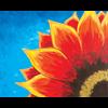 Pattern Pack - Red Sunflower/1 SPO