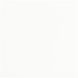 WHITE GLOSS - Gallon - SPO