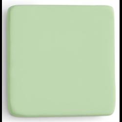 Light Green Party Paint Acrylics,Pint