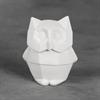 KIDS Owl Facet-ini/6 SPO