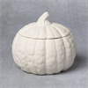 SEASONAL FARMHOUSE PUMPKIN BOX/6 SPO