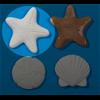 ADD-ONS Starfish Bisquie/12 SPO