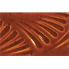 DEEP SIENNA SPECKLE - Pint (Cone 6 Glaze)