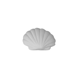 ADD-ONS Scallop Shell Tag-Along/12 SPO