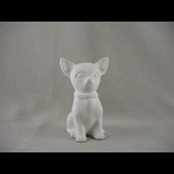 KIDS Chihuahua/12 SPO