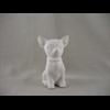KIDS Chihuahua/12