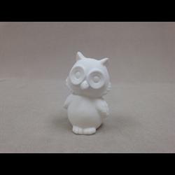 KIDS Cute Owl/12 SPO