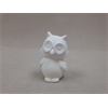 KIDS Cute Owl/12 SPO