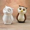 BANKS OWL BANK/6 SPO