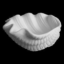 PLATES Giant Clam Shell Dish/6 SPO