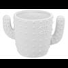 MUGS Cactus Mug/4 SPO