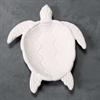 PLATES Sea Turtle Dish/6 SPO