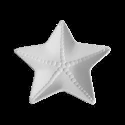 PLATES Sea Star Dish/6 SPO