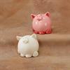 BANKS Pudgy Party Pet Pig Bank/6 SPO