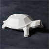 KIDS Faceted Turtle/4 SPO