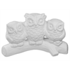 KIDS Owl Family/6 SPO