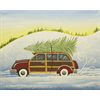 Pattern Pack - Woody Car/1 SPO
