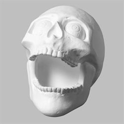 Skull Big Mouth (Casting Mold - Set of 2) SPO