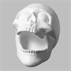 Skull Big Mouth (Casting Mold - Set of 2) SPO