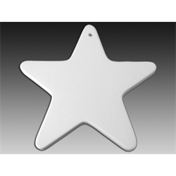 SEASONAL Flat Big Star Ornament/12 SPO